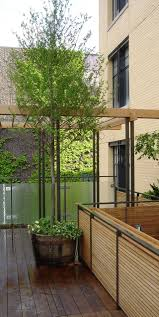 28 best a rooftop garden images on pinterest roof gardens city