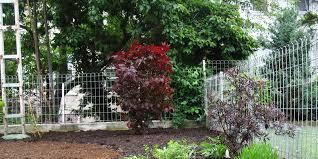 best way to plant a garden gardens design ideas
