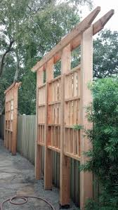 Screen Ideas For Backyard Privacy by Best 25 Privacy Trellis Ideas On Pinterest Privacy Plants