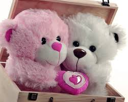 50 most beautiful teddy day wish pictures and images