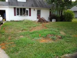 excavation serving peoria u0026 bloomington normal 309 258 1812