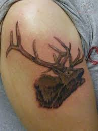 deer head wildlife tattoo on biceps photos pictures and
