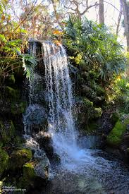 Florida waterfalls images Florida waterfalls phillip 39 s natural world jpg