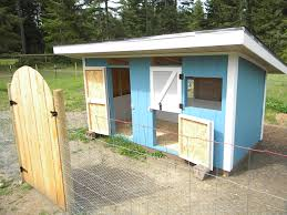 Backyard Chicken Houses by 86 Best Chicken Coop Duck House Plans Images On Pinterest
