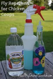 Flies In Backyard How To Get Rid Of Flies 13 Natural And Homemade Fly Repellents
