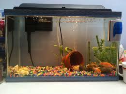 25 einzigartige cheap fish tanks ideen auf aquarium