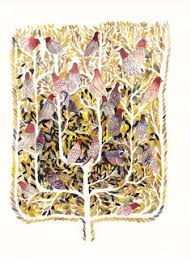 Anthropologie Jellyfish Rug Anthropologie Jellyfish Carpet House Home Items Pinterest