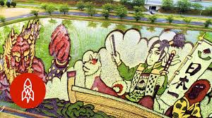 the japanese town growing masterpieces with rice youtube