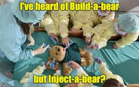 Build A Bear Meme - not sure whether this is the correct way to help children get over