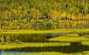 lakes landscape river forest house bardufoss free wallpaper