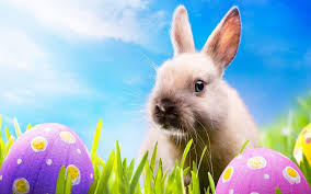 happy easter 2017 wallpapers hd collection