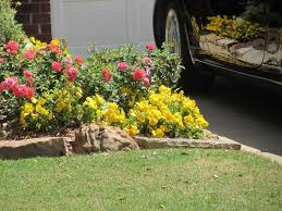 How To Start A Rock Garden by How To Start A Garden In Your Backyard How To Start A Garden