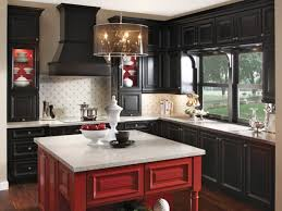 Black And Brown Kitchen Cabinets by Cabinets U0026 Drawer Black Kitchen Theme With Black Cabinet And