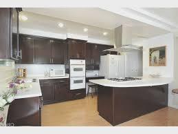 Interior Design Ideas Kitchen Pictures Kitchen Amazing Kitchen Cabinets Santa Ana Design Ideas Modern
