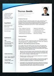 professional resume template it resume professional resume template templates for