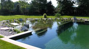 How To Build A Pond In Your Backyard by All About Natural Swimming Pools Green Home Guide Ecohome