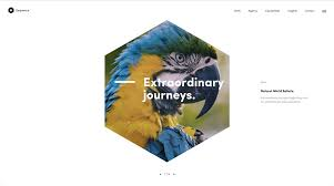 web design trends we can expect to see in 2017