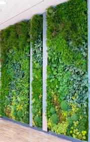 artificial vertical gardens with fake plants on walls stock photo