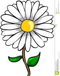 color cartoon daisy flower fresh on ideas picture coloring page