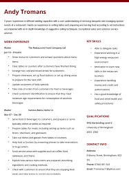 Cocktail Server Resume Sample Of Waitress Resume 11 Examples Cocktail Server Resumes