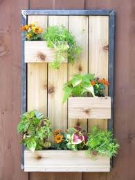 Hanging Wall Planter 15 Hanging Plants Design Ideas For Your Home Wall Mount Brown