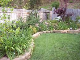 landscape ideas for backyard privacy landscaping trends images