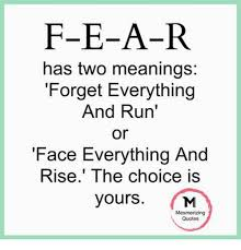Meme Face Meanings - f e a r has two meanings forget everything and run or face