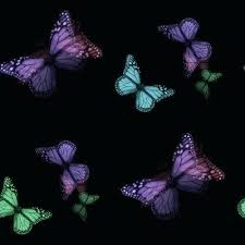 wallpapers of glitter butterflies black butterfly wallpaper best i a butterflies images on butterflies