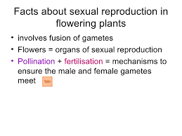 chapter 16 reproduction in plants lesson 1 types of reproduction in u2026