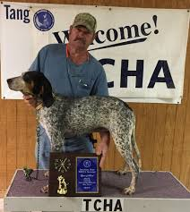 bluetick coonhound breeders ohio sectional events