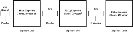 Define Single Blind Experiment B Vitamin Supplementation Mitigates Effects Of Fine Particles On