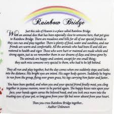 Halloween Shape Poems Amazon Com Pet Bereavement Photo Frame Rainbow Bridge Poem Pet