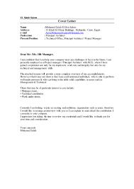 Project Architect Resume Mohamed Salah Project Manager Principal Architect C V