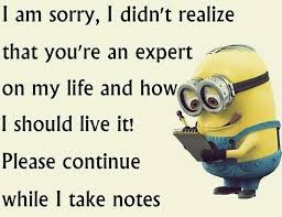 Memes De Minions - best funny quotes top 40 funniest minions pics and memes
