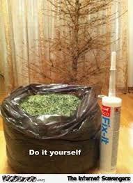 Christmas Tree Meme - funny do it yourself christmas tree meme pmslweb