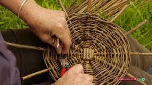 how to clean wicker baskets weaving the landscape willow u0026 birch basketry st sterling college