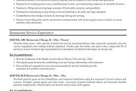 server resume sles great gatsby essays corruption american vista on resume