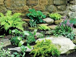 rock gardens landscaping tips for a rock garden in new england
