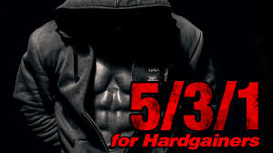 5 3 1 for hardgainers t nation