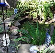 pond cleanouts pond repair magnolia ponds and water gardens the