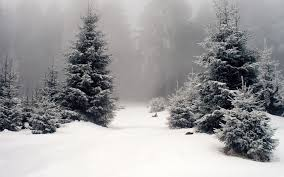 winter nature wallpapers nature wallpaper set 73 winter awesome wallpapers
