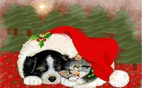 cute dog christmas wallpapers christmas wallpaper