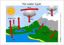 ks2 water cycle teaching resources and printables sparklebox
