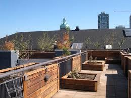 lawn u0026 garden extraordinary roof garden ideas gallery and