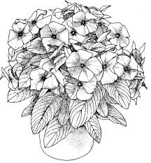 coloring pages landscapes flowescoloring printable in free