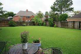 Big Backyard Design Ideas Fence For Backyard Pond Cool Backyard Ideas Astonishing Backyard