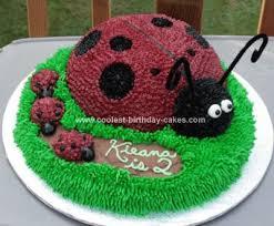 ladybug birthday cake coolest ladybug birthday cake