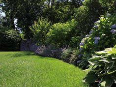 Basic Backyard Landscaping Ideas Front Yard Landscaping Ideas On A Budget Winning Things
