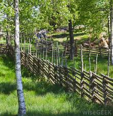 Types Of Backyard Fencing What Are The Different Options For Backyard Fences