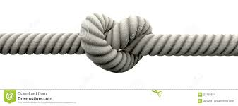 knot wedding tie the knot with wedding rings stock images image 27159834